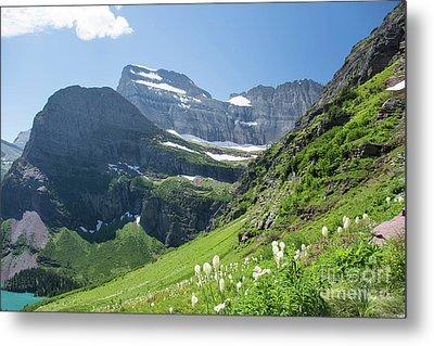 Beargrass - Grinnell Glacier Trail - Glacier National Park Metal Print