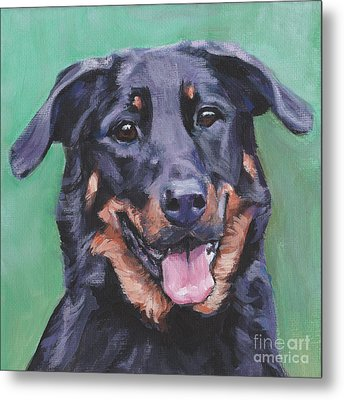 Metal Print featuring the painting Beauceron Portrait by Lee Ann Shepard