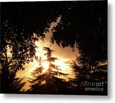 Beaumont Sunset Metal Print