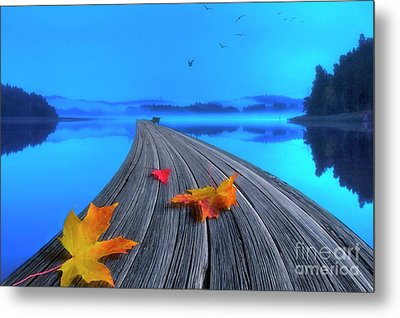 Beautiful Autumn Morning Metal Print