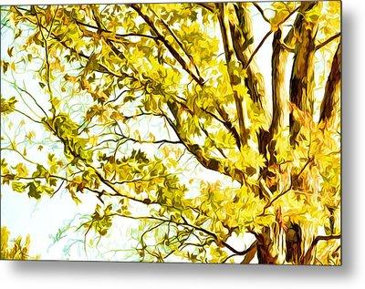 Beautiful Autumn Trees 1 Metal Print by Lanjee Chee