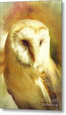 Beautiful Barn Owl Metal Print by Tina LeCour