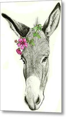 Beautiful Donkey Metal Print by Heidi Kriel