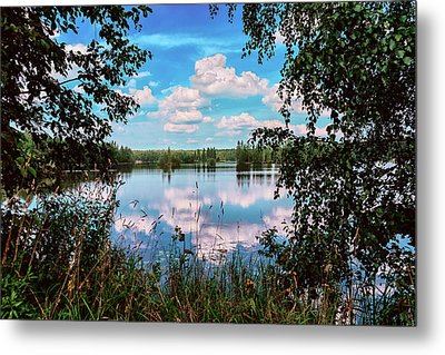 beautiful forest lake in Sunny summer day Metal Print