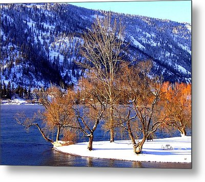 Metal Print featuring the photograph Beautiful Kaloya Park by Will Borden
