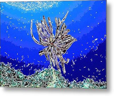 Beautiful Marine Plants 1 Metal Print by Lanjee Chee