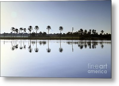 Beautiful Nature In Morning - Egypt. Metal Print by Mohamed Elkhamisy