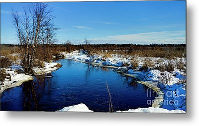 Beautiful Necedah Wildlife Refuge  Metal Print by Ricky L Jones