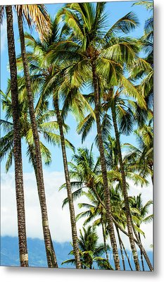 Metal Print featuring the photograph Beautiful Palms Of Maui 16 by Micah May