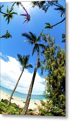Metal Print featuring the photograph Beautiful Palms Of Maui 17 by Micah May