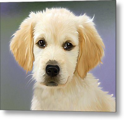 Beautiful Puppy Metal Print
