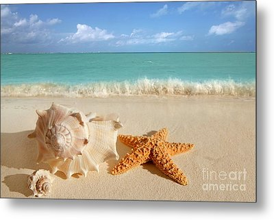 Beautiful Shell On Sand Metal Print by Boon Mee