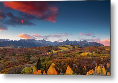 Metal Print featuring the photograph Beautiful Tints Of Autumn by Tim Reaves