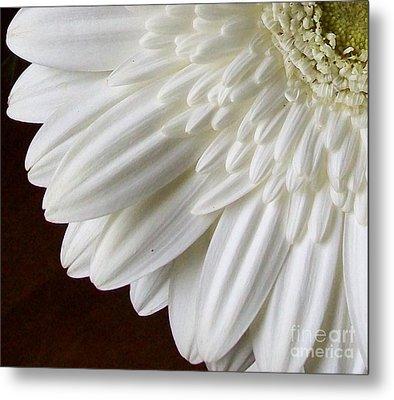 Beautiful Whiteness Metal Print by Marsha Heiken