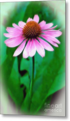 Metal Print featuring the photograph Beauty Among The Leaves by Sue Melvin