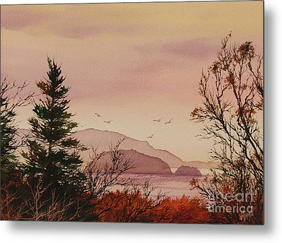 Metal Print featuring the painting Beauty At The Shore by James Williamson