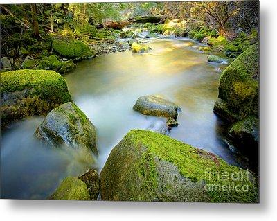 Beauty Creek Metal Print by Idaho Scenic Images Linda Lantzy