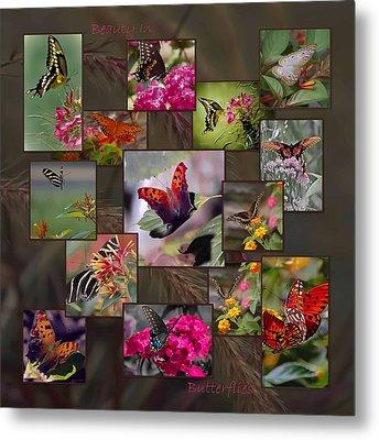 Beauty In Butterflies Metal Print by DigiArt Diaries by Vicky B Fuller