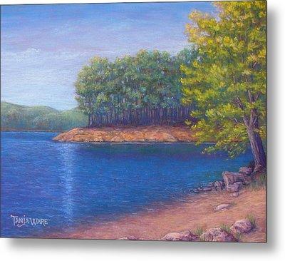 Beaver Lake Blue Metal Print by Tanja Ware