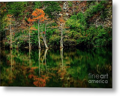Beaver's Bend Color Explosion Metal Print by Tamyra Ayles