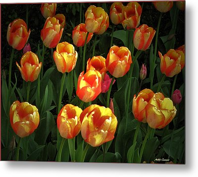 Bed Of Tulips Metal Print by Mikki Cucuzzo