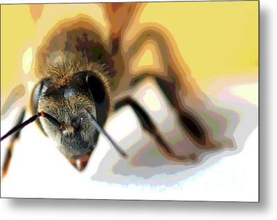 Metal Print featuring the photograph Bee In Macro 5 by Micah May