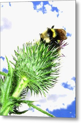Bee-line 4 Metal Print by Will Borden