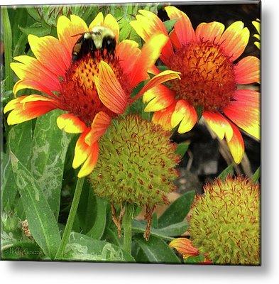 Bee On Colorful Flowers Metal Print