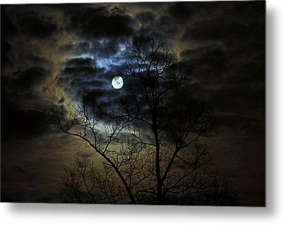 Bella Luna Metal Print by Suzanne Stout