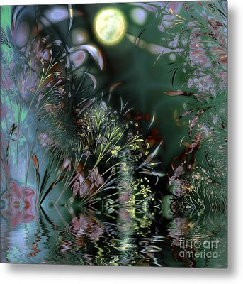 Beltane Dragonfly Night Metal Print by Mindy Sommers