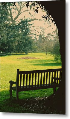 Bench Under A Tree Metal Print