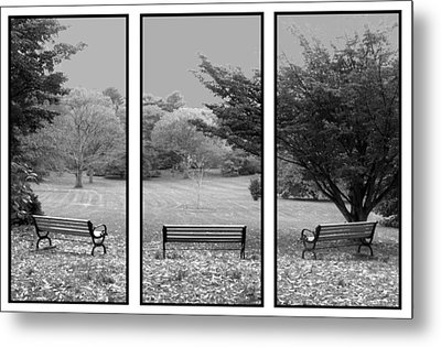 Bench View Triptic Metal Print by Tom Romeo