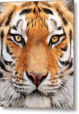 Bengal Tiger Metal Print by Bill Fleming