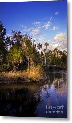 Bent Stream Metal Print by Marvin Spates