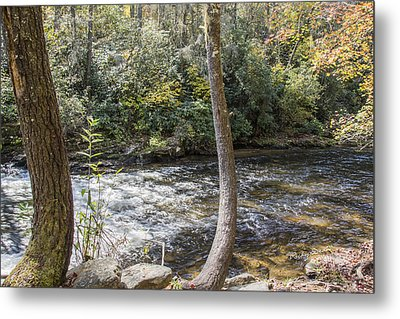 Bent Tree River Metal Print