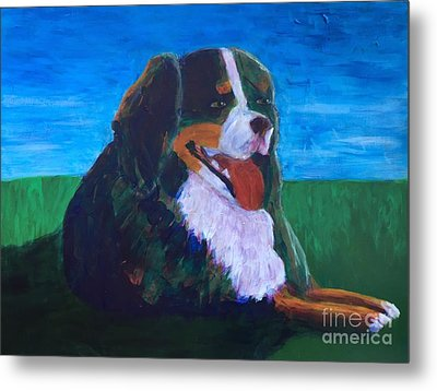 Metal Print featuring the painting Bernese Mtn Dog Resting On The Grass by Donald J Ryker III