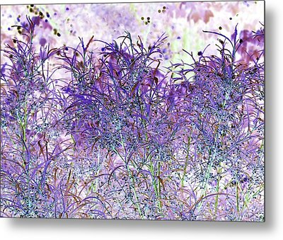 Metal Print featuring the photograph Berry Bush by Ellen O'Reilly