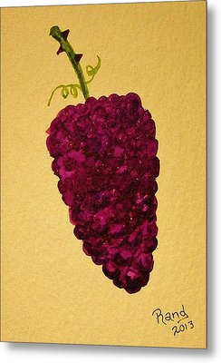 Berry Good Metal Print by Rand Swift
