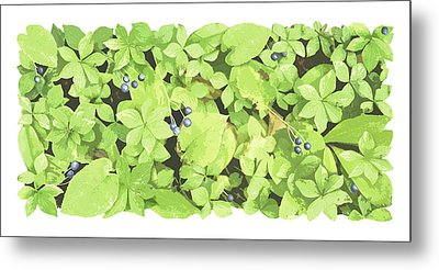 Berry Landscape Metal Print by JQ Licensing