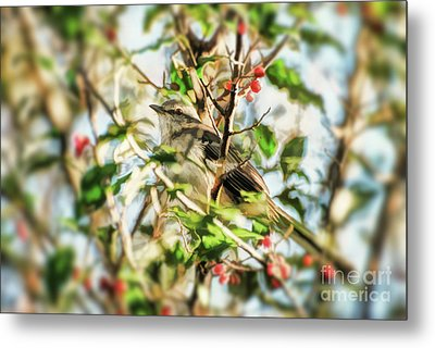 Metal Print featuring the photograph Berry Merry Mockingbird by Kerri Farley