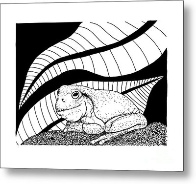 Betsy's Frog Metal Print