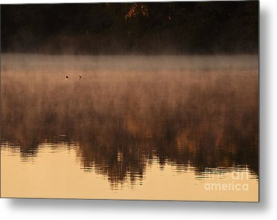 Metal Print featuring the photograph Bev's Retreat by Tamyra Ayles