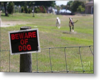Beware Of Dogs Metal Print