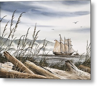 Beyond Driftwood Shores Metal Print by James Williamson