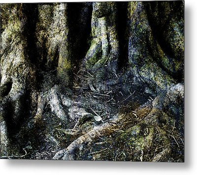 Beyond The Forest Edge Metal Print by Kelly Jade King