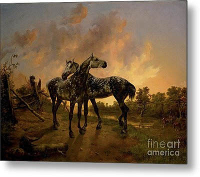 Biche And Mouche Metal Print by MotionAge Designs