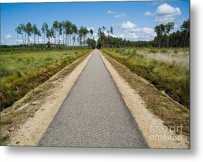 Bicycle Track Passing Through The Landes Forest Metal Print by Sami Sarkis