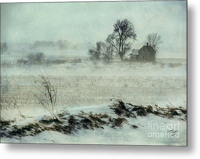 Biding The Storm Metal Print by Terrie Galvin