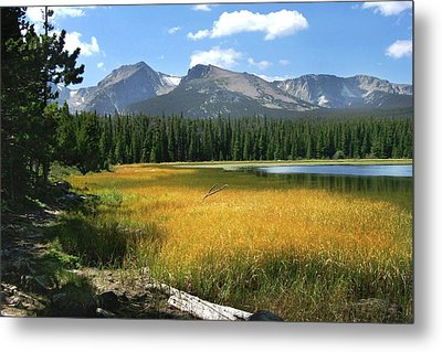 Autumn At Bierstadt Lake Metal Print by David Chandler