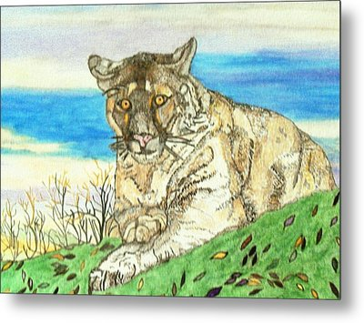 Metal Print featuring the painting Big Cat Watching Out For Prey by Connie Valasco